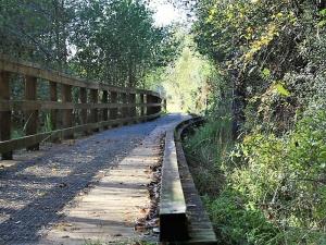 Elvetham Heath Nature Reserve Walk