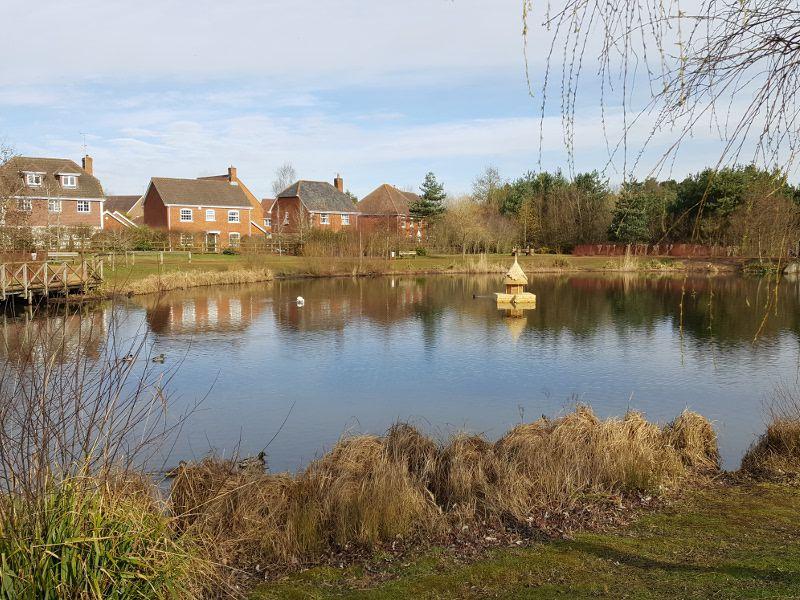 Elvetham Heath Nature Reserve Pond